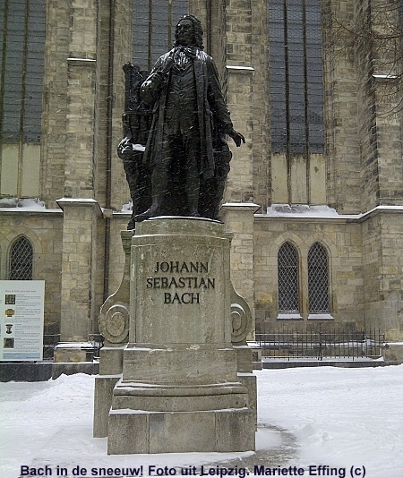 Bach sneeuw